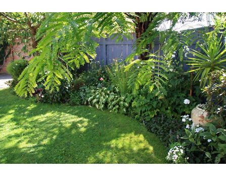 Gardening wellington landscaping garden designs lower hutt for Small garden designs nz